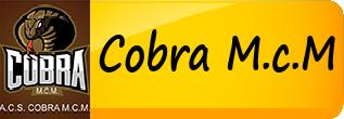 Asociatia Club Sportiv Cobra